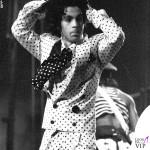 Prince 1988 3